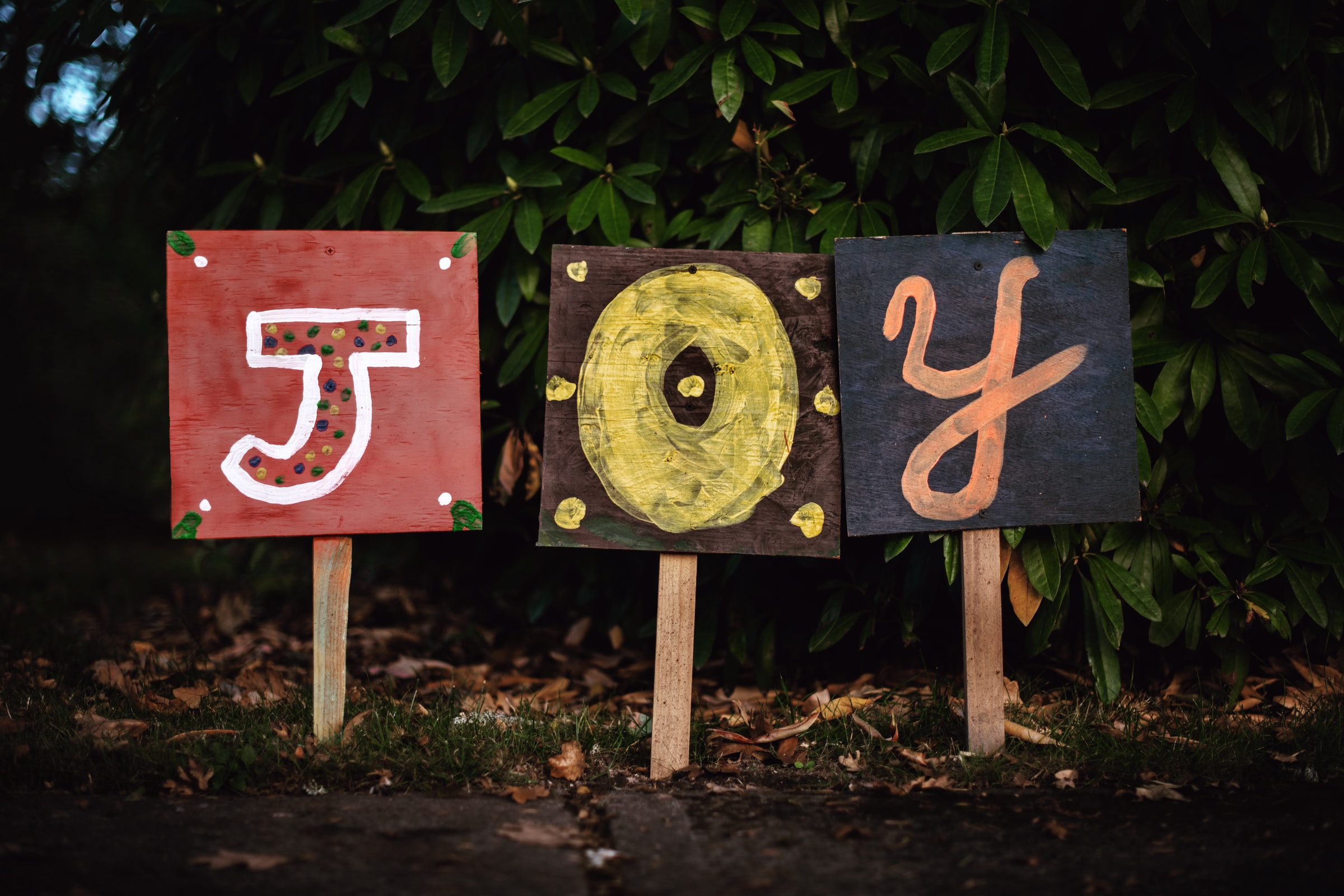 Finding Joy In Hard Times – 3 Tips To Overcome Current Adversity