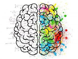 5 Key Ways To Improve Brain Performance